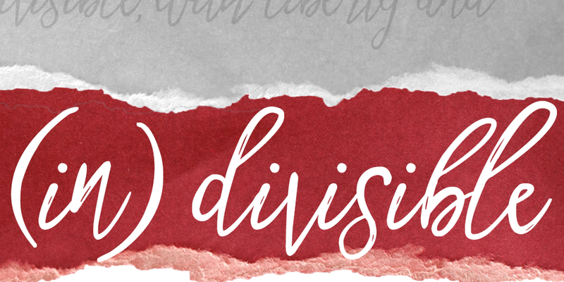 (in)divisible at Rose Wagner Theater
